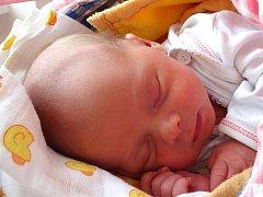 Patrik Skotnica se narodil 22. ledna Lucii Skotnica Pišnové a Vladimíru Skotnicovi z Kardašovy Řečice. Vážil 3100 gramů a měřil 51 centimetrů.