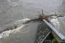 Nežárka v jindřichohradeckých Zbuzanech přidělává obyvatelům vrásky na čele. V pátek ráno se zase o pár metrů voda přiblížila k jejich  domovům.