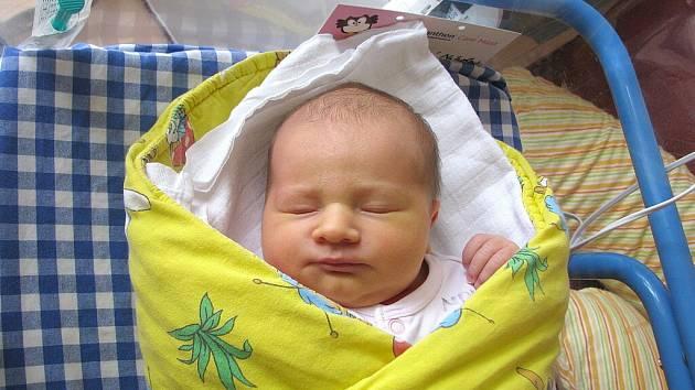 Nikola Čekalová se narodila 23. června v 16 hodin a 20 minut Jitce a Petrovi Čekalovým z Třeboně. Vážila 4000 gramů a  měřila 52 centimetrů.