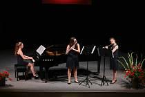 V pondělí se v rámci festivalu Třeboňská nocturna představili žáci třeboňské Základní umělecké školy.