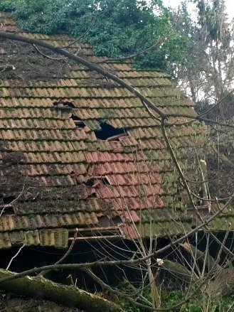 Poškozená střecha po pádu stromu na rekreační chalupu ve Dvorcích u Plavska.
