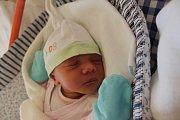 Andrea Heligrová se narodila 20. listopadu Barboře Kuráčkové a Jiřímu Heligrovi z Otína. Měřila 47 centimetrů a vážila 3000 gramů.