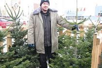 Bild vergrößern ZELENÍ KRASAVCI. Vánoční stromky jsou k mání u Kauflandu v Jindřichově Hradci až do Štědrého dne dopoledne u prodejce Iva Gašpárka (na snímku).