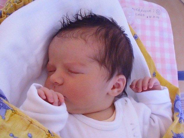 Klára Dvořáková z Kunžaku, 17. listopadu 2009, 3830 gramů, 48 centimetrů