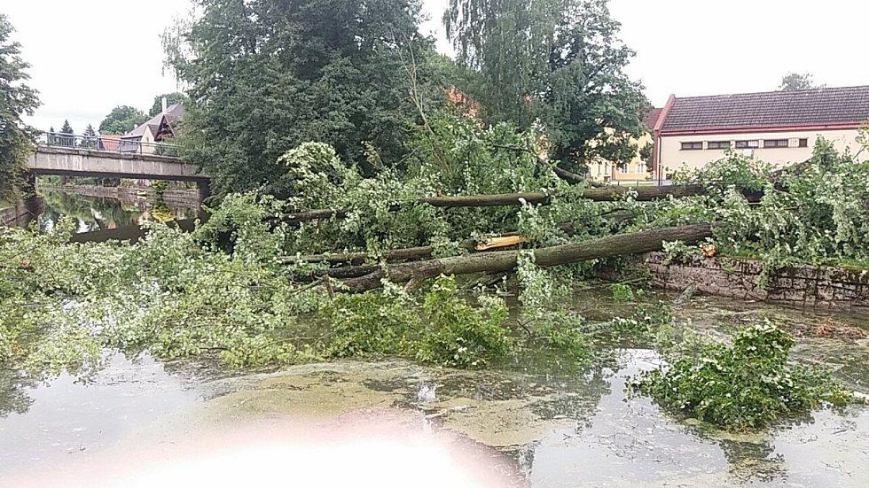 V Jindřichově Hradci pod Nežáreckou bránou je v řece několik vyvrácených stromů.