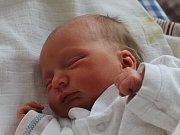 Sofie Přibylová se narodila 20. ledna Nikole Přibylové z Člunku.  Měřila 45 centimetrů a vážila 2640 gramů.