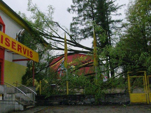 Strom u firmy Staviservis v Jindřichově Hradci, který nevydržel při prvomájové bouřce, strhl elektrické vedení a zasáhli bránu a střechu budovy.