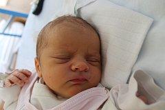 Rozárka Dubšíková se narodila 13. března Šárce Stručovské a Vítu Dubšíkovi ze Střížovic. Měřila 48 centimetrů a vážila 3004 gramy.