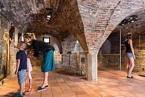 Pro letošní rok si v Domě Štěpánka Netolického v Třeboni připravili řadu zajímavých výstav a doprovodných akcí.