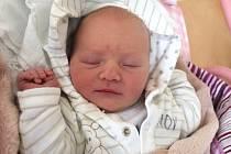 Aneta Foglová se narodila 13. července Martě Havlíkové a Davidu Foglovi ze Studené. Vážila 3200 gramů a měřila 49 centimetrů.