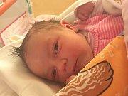 Anna Mia Píchová se narodila 22. ledna Ivaně a Petrovi Píchovým z Jindřichova Hradce.  Měřila 51 centimetrů a vážila 4060 gramů.