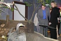 xponáty včetně uspořádání expozice byly v roce 2004  nadčasové.