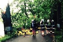 Nedělní bouřka na Suchdolsku. Veleničtí hasiči odstraňovali spadlé stromy mezi Majdalenou a Cepem.