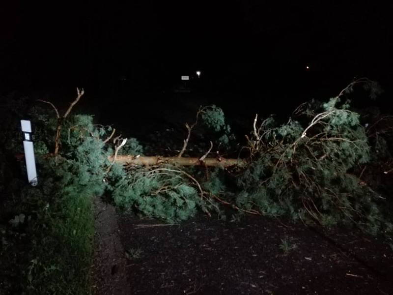 Následky bouřky na jihu Čech v noci z pátku na sobotu budou lidé ještě nějaký čas odstraňovat. Padlý strom v Hatíně.
