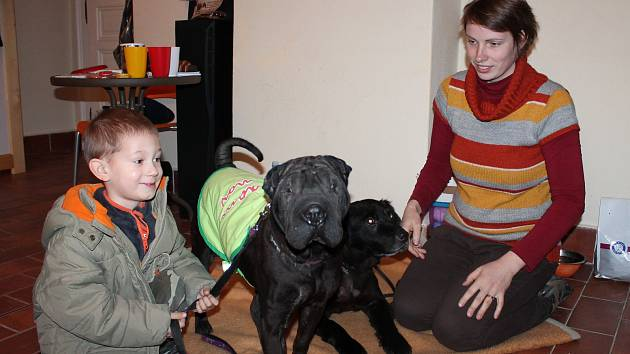 Spolek Cibela, který se stará o psí i jiné zvířecí nalezence, představil v minulosti své svěřence i v hradeckém domě dětí.