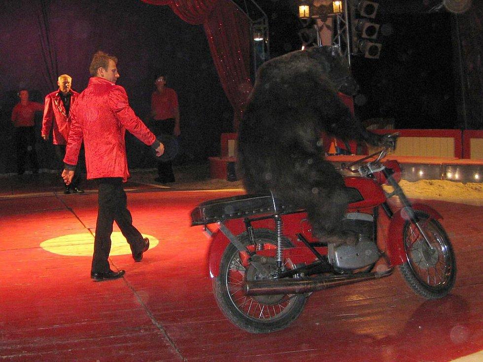 Čtvrteční představení cirkusu Berousek v J. Hradci.