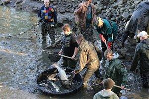 Deštenští rybáři zatahovali sítě na rybníku Voleský.