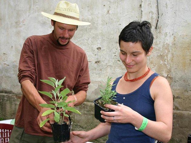 Na snímku květiny prodává na víkendovém jarmarku Radovan Hájek z Trvalkové školy Florianus.