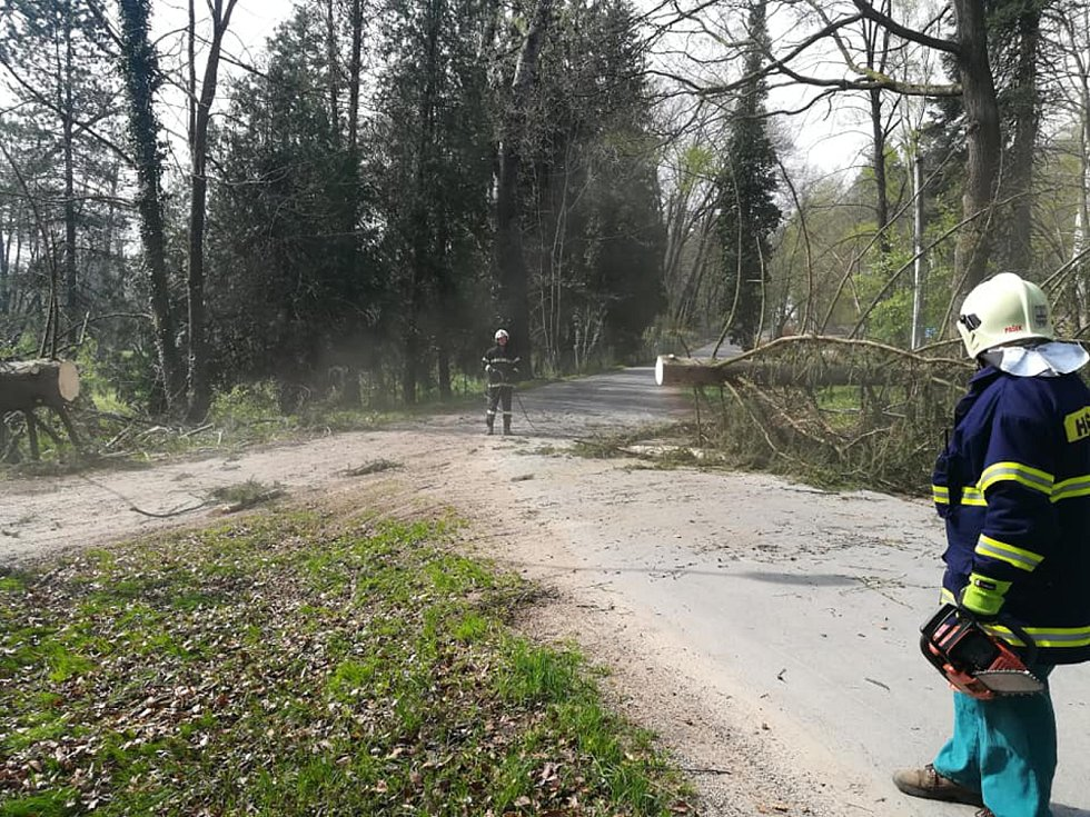 Při úterní vichřici se dobrovolní hasiči z Chlumu u Třeboně nezastavili.