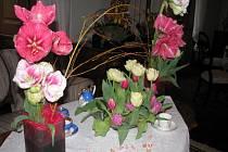 Květinová Třeboň a výstava Amarylis a holandský tulipán.