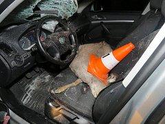 Zvíře, které vběhlo před jedoucí auto, způsobilo dopravní nehodu.