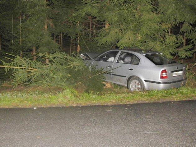 Při nárazu do stromu u Blažejova se řidič zranil.