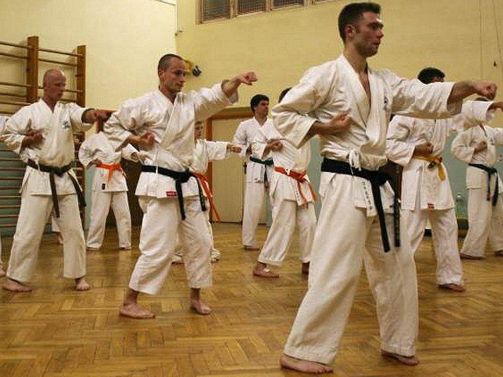 O jindřichohradecké karate je stále zájem.