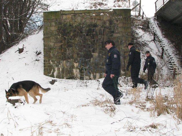 Policisté se ve čtvrtek zvovu vrátili k řece Nežárce, aby pročesávali její břehy a pátrali po zmizelé Soně Illeové.
