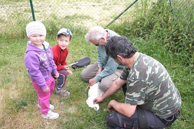 Na snímku vedoucí Skupiny pro výzkum brodivých ptáku ČR a SR Stanislav Chvapil ukazuje nasazování kroužku Petru Šindelářovi a Andree Myšíkové.
