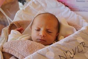 Eliška Loosová, PlešeNarodila se 16. června mamince Martině Křiklánové a tatínkovi Františku Loosovi. Vážila 2500 gramů.