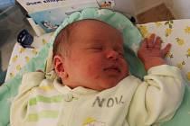 Tobiáš Bílek, BlažejovNarodil se 4. června Aleně a Tomáši Bílkovým. Vážil 3 680 gramů.