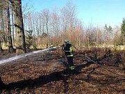 V úterý dobrovolní a profihasiči z Jindřichova Hradce zasahovali u požáru mladého lesa u Dolního Skrýchova.