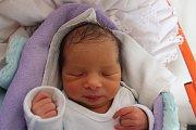 Jessica Ferková se narodila 17. listopadu Denise Mikové a Jaroslavu Ferkovi z Gabrielky u Kamenice nad Lipou. Měřila 47 centimetrů a vážila 2430 gramů.