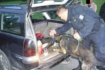 Policisté se při zátahu na Jindřichohradecku zaměřili na drogy. Využili i speciálně vycvičeného psa k vyhledávání drog.