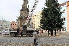 Vánoční jedle, dvanáct metrů vysoká, se na náměstí Míru usazovala v úterý dopoledne.