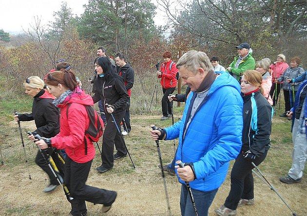 Běžkařské stopy v okolí Slavonic využívají při nedostatku sněhu alespoň vyznavači nordic walking.