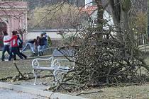 Jindřichohradecký městský park je oblíbený a hodně navštěvovaný, proto jsou v současné době prováděny odborné zásahy do korun stromů, aby  lidi neohrožovaly padající větve.