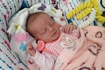Mladší sestřička se 3. července narodila Denise Pechové z obce Heřmaneč. Malá Evelínka Pechová přišla na svět ve 4.03 hodina vážila , 3490g a měřila 50 cm.