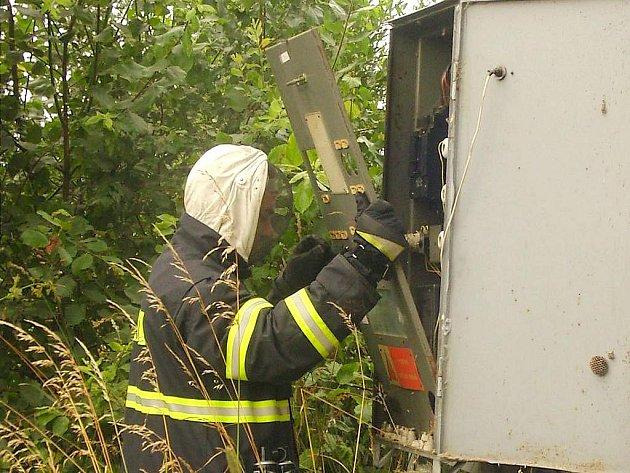 Na snímku sucholští dobrovolní hasiči likvidují vosí hnizdo v rozvadeči.