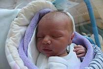 Miroslav Novotný se narodil 15. srpna Janě Valentové a Milanu Novotnému z Rodvínova. Měřil 49 centimetrů a vážil 3570 gramů.
