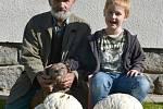 OBŘÍ PÝCHAVKY našel Josef Novák ze Skrýchova u Studené, který do lesa vyrazil s vnukem Honzíkem a čtyřnohým pomocníkem Arim. Jedna pýchavka vážila 4,3 kg a druhá 3 kg.