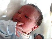 David Zelený se narodil 4. března Haně Jurczakové a Davidu Zelenému z Jindřichova Hradce. Měřil 50 centimetrů a vážil 3770 gramů.