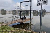 Jarní procházka okolo rybníka Kozlov u Nové Včelnice.
