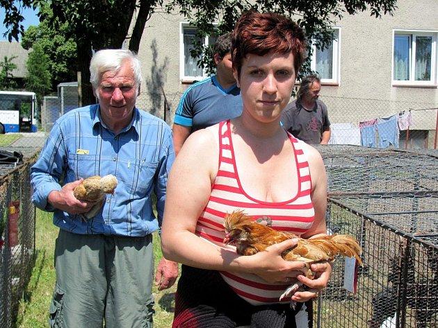 Na výstavě získala ocenění v kategorii slepic drobná slípka, kterou v ruce drží pořadatel soutěže Josef Horký. Majitelka Michaela Porochoňská první místo nečekala.