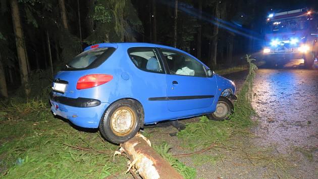 V pátek po třetí hodině ranní auto u Blažejova narazilo do spadlého stromu.