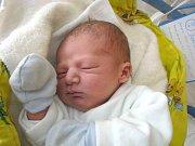 Adam Lašťovka se narodil 12. dubna v 9 hodin  Šárce Kokešové a Lukáši Lašťovkoviz Deštné. Vážil 4010 gramů a měřil 52 centimetrů.