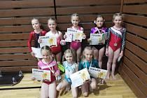 Sportovní gymnastky jindřichohradeckého Slovanu získaly na Trhovosvinenském poháru sedm medailí.