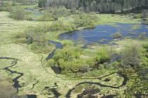 Podél řeky Lužnice, která protéká i Majdalenou na Třeboňsku.