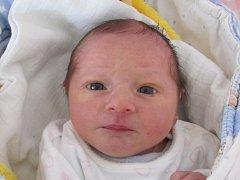 Nikola Jirsová  se narodila 25. června  Kateřině Jirsové z Počátek. Vážila 2650 gramů a měřila 47 centimetrů.