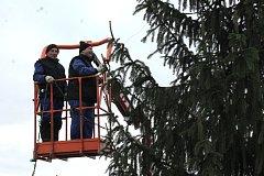 V Chlumu u Třeboně je již na Náměstí připravený vánoční strom.